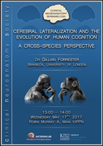Cerebral lateralization and the evolution of human cognition: A cross-species perspective