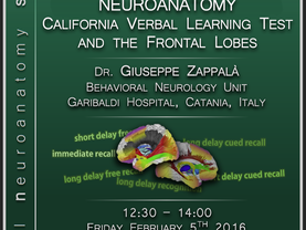 Neuropsychology meets neuroanatomy: The California Verbal Learning Test and the frontal lobes