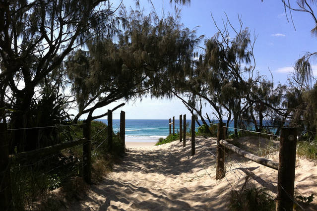 Walk to Mount Coolum Beach