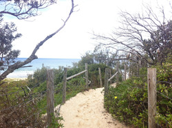 Mount Coolum beach tracks