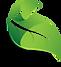 2016-leaf-icon-leaf.png