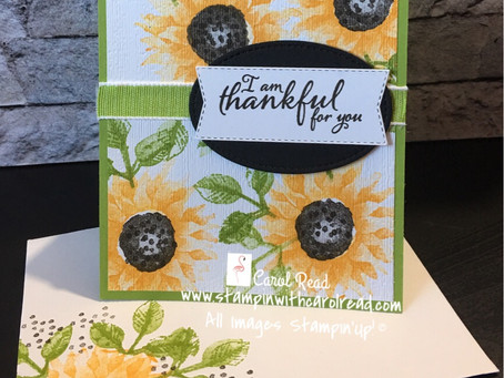 Painted Harvest Sunflower