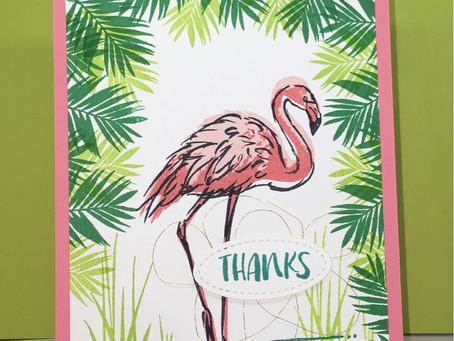 A Flamingo Thank You