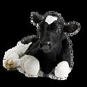 Calves.png