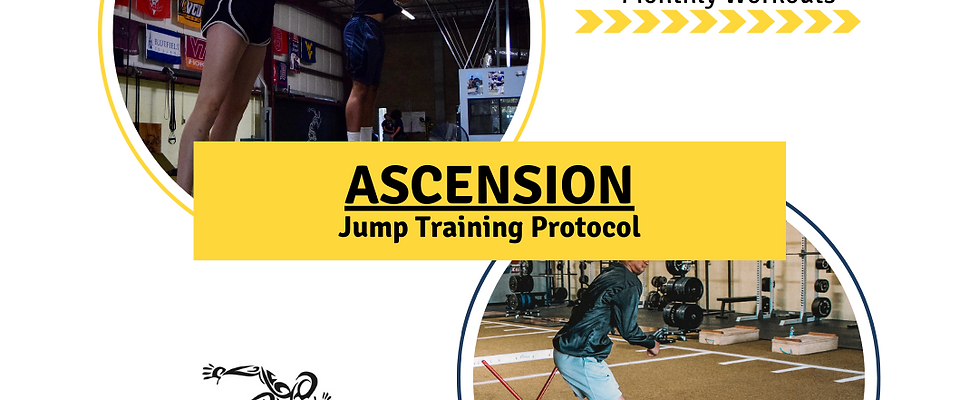 Ascension [Jump Training Protocol]