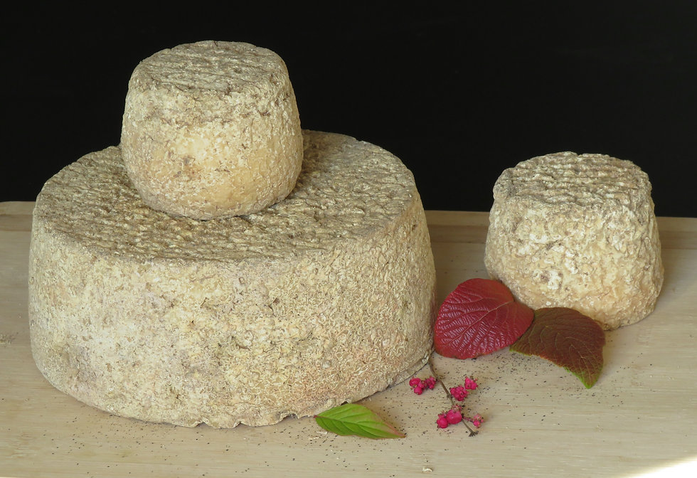 Fromage Maurice
