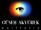 Gunes Akyurek Portfolio