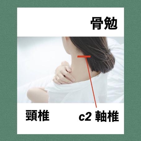 【頸椎 C2軸椎の話】骨勉