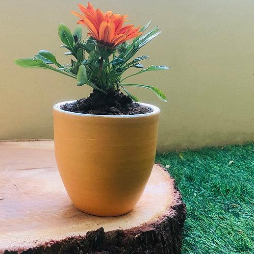"Terracota Peach Pap Planter - 4.5"""