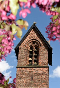 Church_Cherry_Blossom.jpg