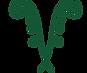 evol.v logo copy.png