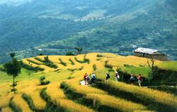 Journeys Nepal - Annapurna - Journeys Nepal LLC