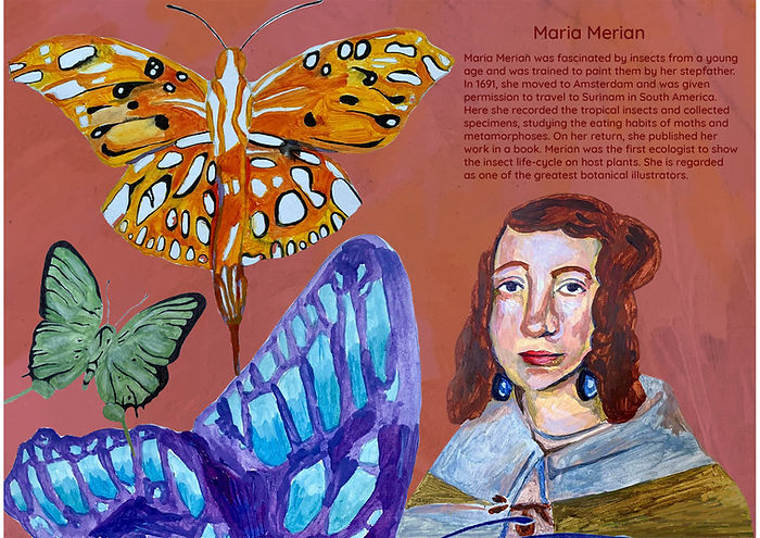book on scientists -Maria Merian