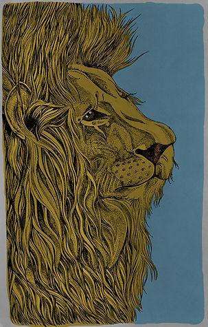 Lion - Illustration for Poster - Fine Liner Drawing and Digital Colour