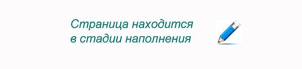 stranica_na_etape_napolneniya.jpg