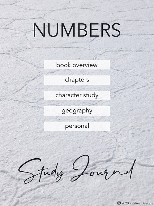 Numbers Study Journal PDF with hyperlinks