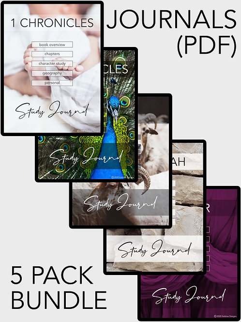 1 Chronicles-Esther Study Journal PDF 5 pack
