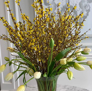 #forsythia  and #frenchtulips  look grea