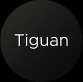 TTE Turbo Tiguan   Hybrid turbo's