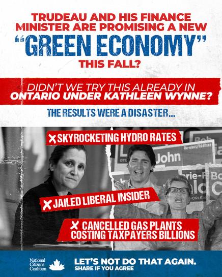 NCC_Green Economy_B&W3.jpg
