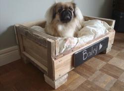 Sofá para perro