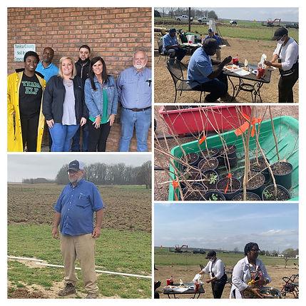 Collage - Community Volunteer Day 2021.j