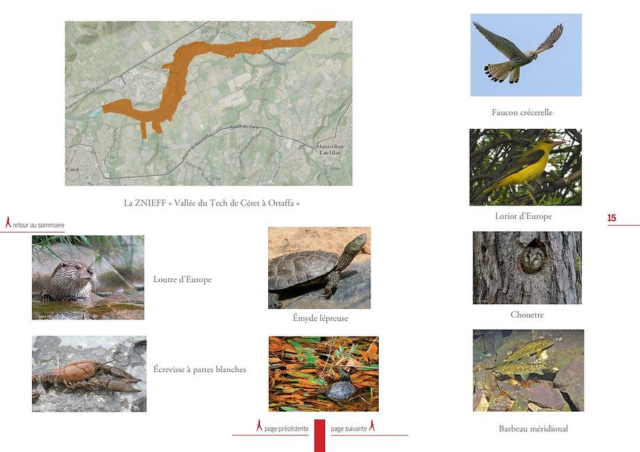 Environnement pont ceret protection biodiversité non bien vivre en vallespir 2