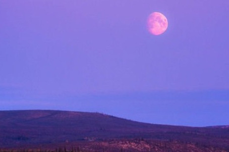 2021.04.26 Pink Moon, April 2021