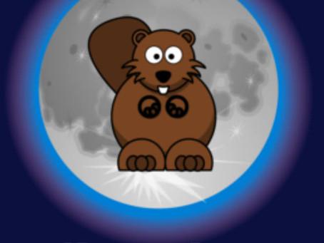 2020.11.30 Beaver Moon, November 2020