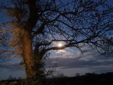 2021.02.28 - Snow Moon, February 2021