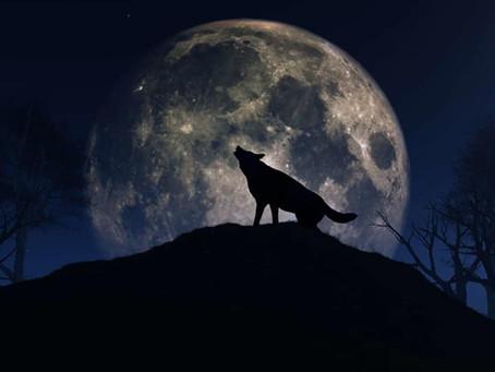2021.01.28 Wolf Moon, January 2021
