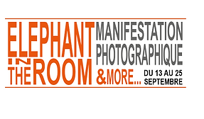 ELEPHANT IN THE ROOM LOGO_OK.png