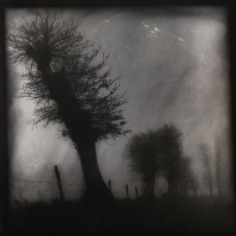 ©JEAN-MICHEL FAUQUET