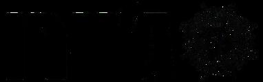 לוגו ג'יירו (בלי רקע) - מתן דייויס.png