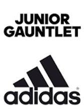 Jr Gaunlet.jpg