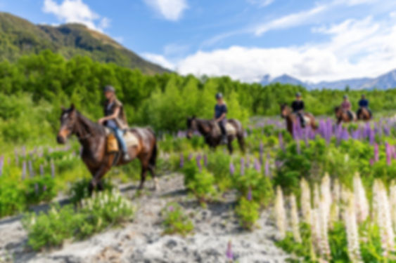 Dart River Adventures - www.jamesallan.c