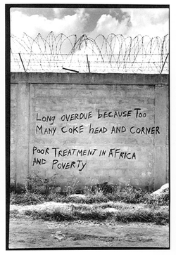 THEY SAY A MAD MAN WROTE THIS (WALL)