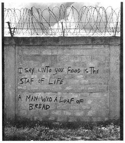 THEY SAY A MADMAN WROTE THIS (WALL)