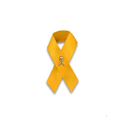 Gold Ribbon Satin Pin