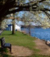 lake parsippany.jpg