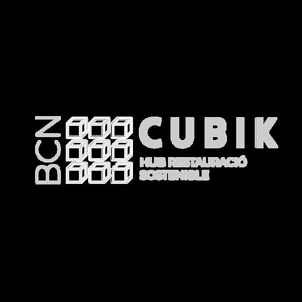 CUBIK%20logo-03_edited.png