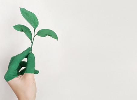 La resiliencia de lo analógico: hacia una gestión sostenible en restauración