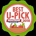 MontroseFF-BestUPick-AWARD_9-18-01.png
