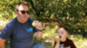 apple picking Alax.jpg