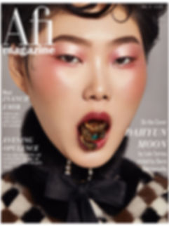 afi vol 4 issue 2