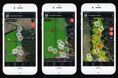 App-map.jpg