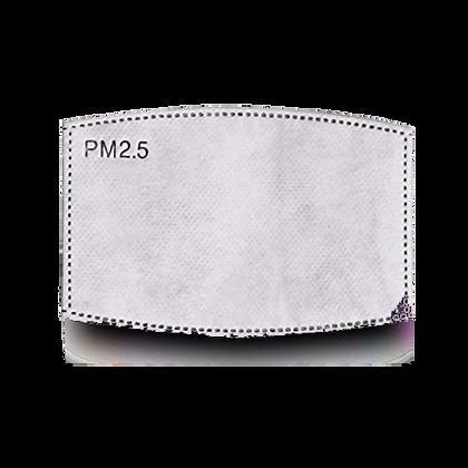 Filtre antipollution PM : 2,5µm