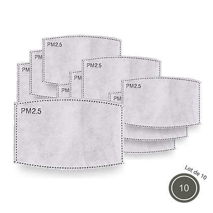 Set of 10 PM pollution filters: 2.5µm