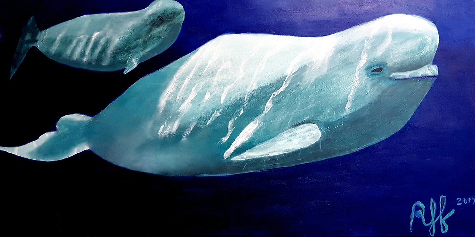 Belugas - Ryley Jensen Fisk.jpg