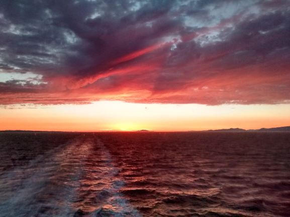 Art Card - Sunset